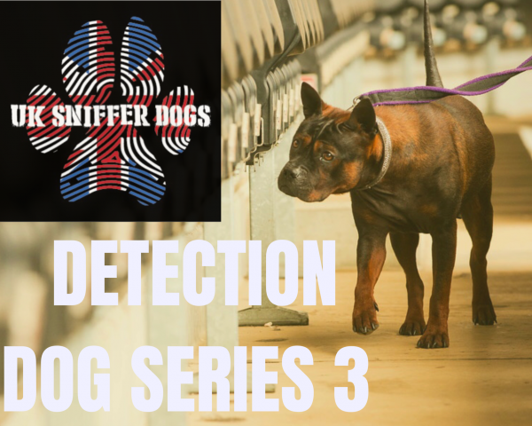 UK SNIFFER DOGS Detection Dog Series 3